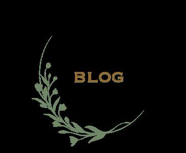 Blog - Balogh–Esterházy-kastély